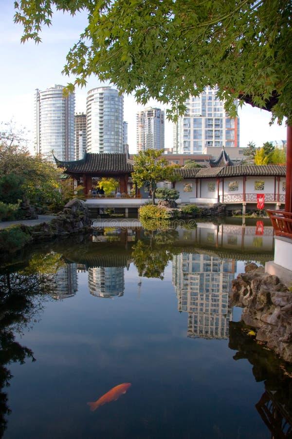 Tradycyjni Chińskie staw podczas gdy nowożytni highrises behind, Vancouver, BC obrazy stock
