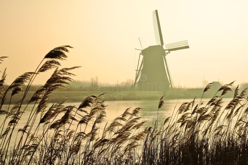 Tradycyjni Holenderscy wiatraczki przy świtem zdjęcia stock