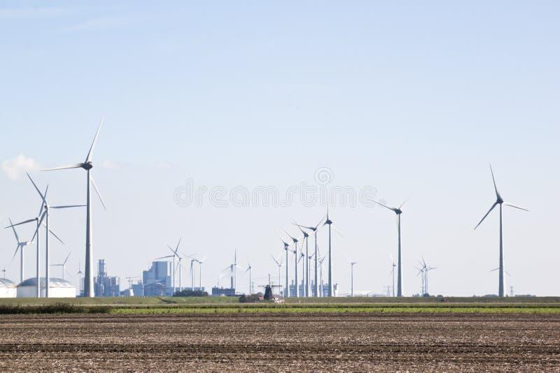 Tradycyjni i odnawialni wiatraczki w holandiach fotografia royalty free