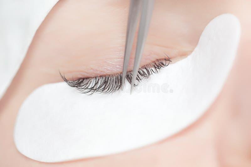 Tradycyjni rzęs rozszerzenia Selekcyjna ostrość stonowany Makeup zakończenie obraz royalty free