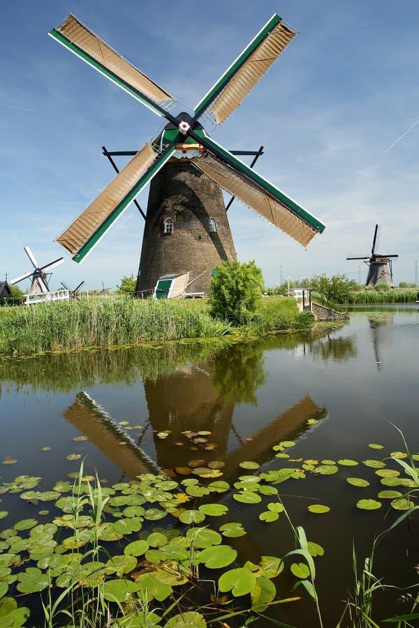 Tradycyjni wiatraczki wśród wiejskiego krajobrazu w Kinderdijk Unesco światowym dziedzictwie obraz stock