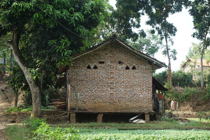 Tradycyjny Czerwonej cegły dom na szpinaka gospodarstwie rolnym w Javenese Village_2 fotografia stock