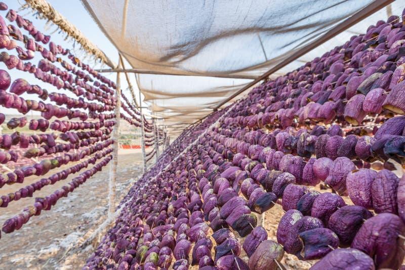 Tradycyjny oberżyny osuszki proces w Gaziantep, Turcja fotografia royalty free