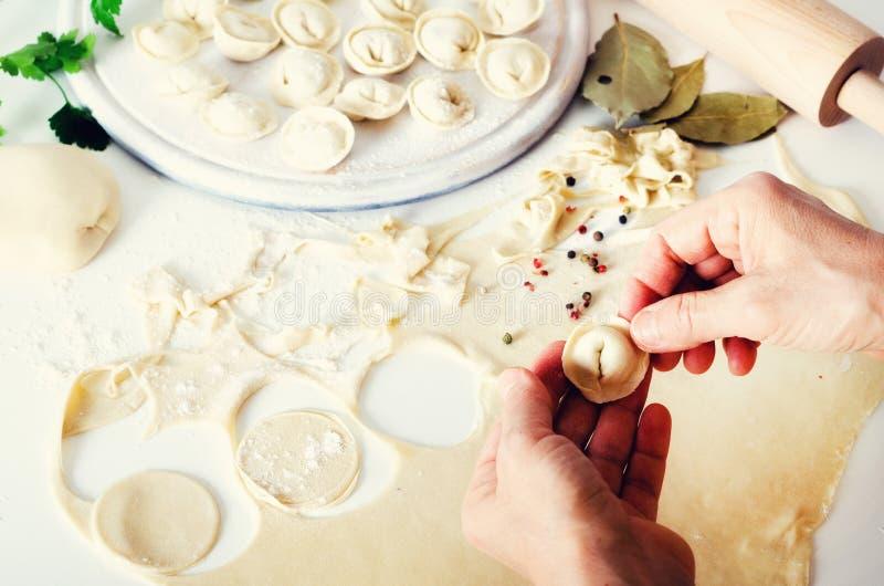 Tradycyjny rosyjski pelmeni, pierożek, kluchy z mięsem na bielu betonuje tło Pietruszka, przepiórek jajka, pieprz obraz stock