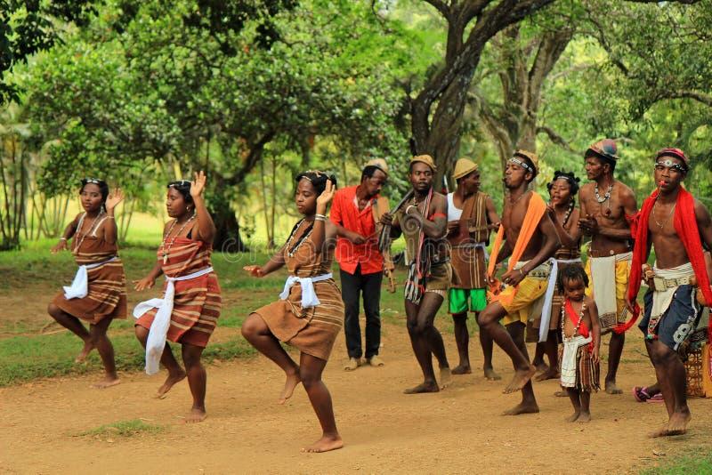 Tradycyjny taniec w Madagascar, Afryka zdjęcie royalty free