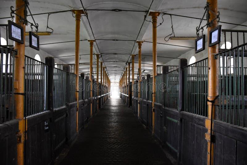Tradycyjny, węgierski, starożytny widok wnętrza stodoły koni zdjęcie stock
