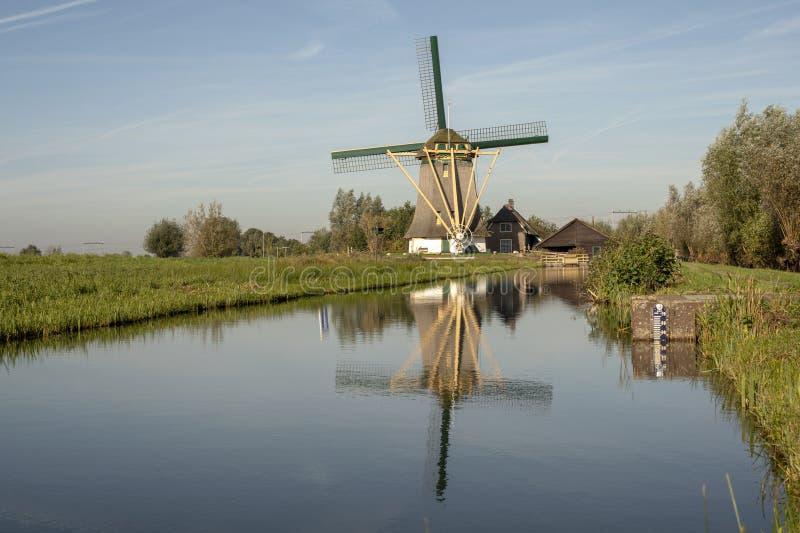 Tradycyjny wiatrak holowniczy na brzegu stawu na wsi Holandii fotografia royalty free