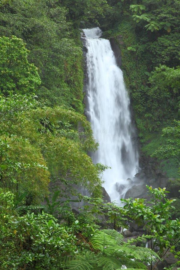 Trafalgar baja en Dominica, islas caribeñas fotografía de archivo libre de regalías