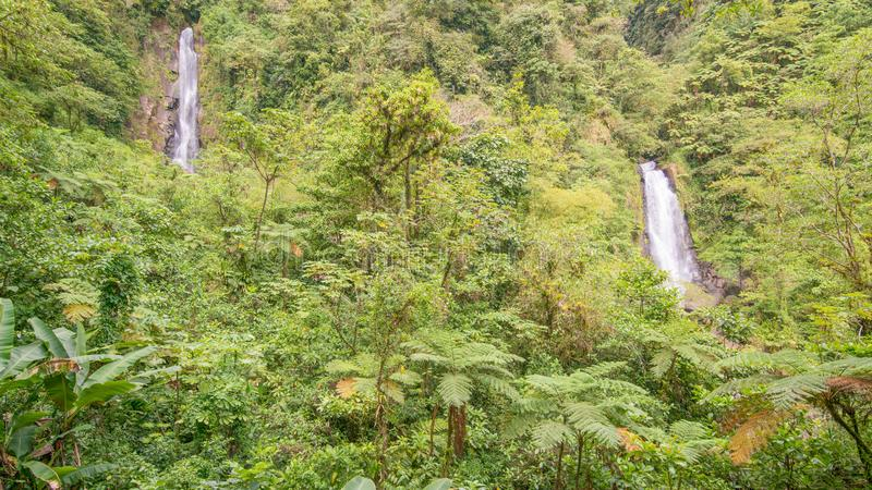 Trafalgar Falls in Dominica before Hurricane Maria damage stock photography