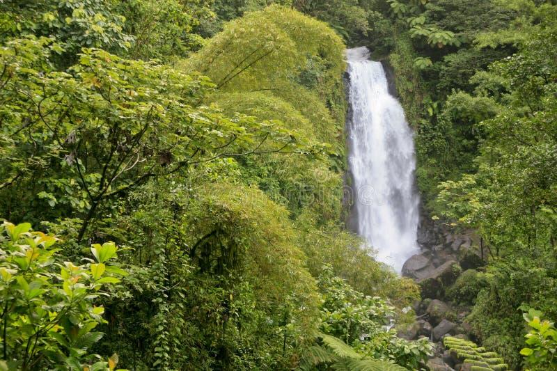 Trafalgar spadki, Dominica fotografia stock