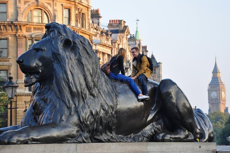 Trafalgar Square lejon, London royaltyfri foto