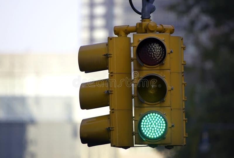 Traffic light on green stock photography