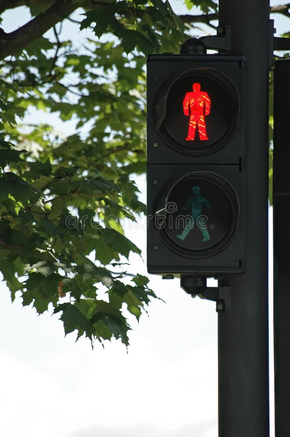 Traffic light for pedestrians with lit Red man - Don`t walk sign. And maple tree in background. Traffic, prohibition, signs and urbanism concepts royalty free stock images