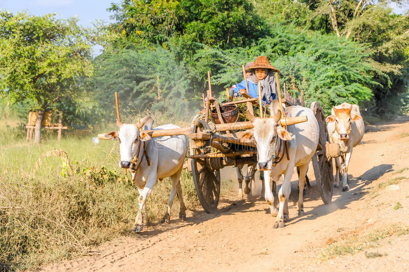 Traffic on The Roads Myanmar