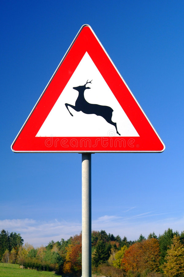 Traffic sign deer pass royalty free stock images