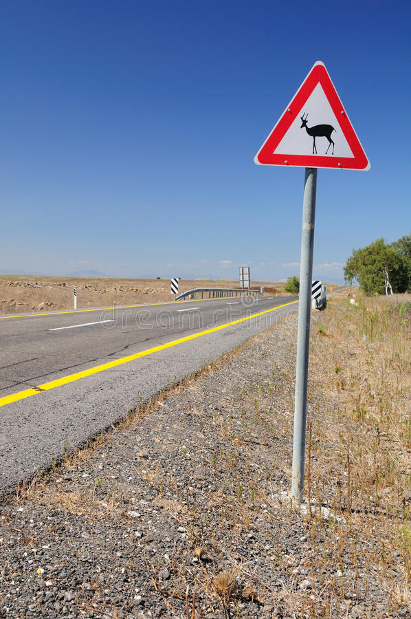 Download Traffic Sign Deers. stock photo. Image of highway, asphalt - 33594190