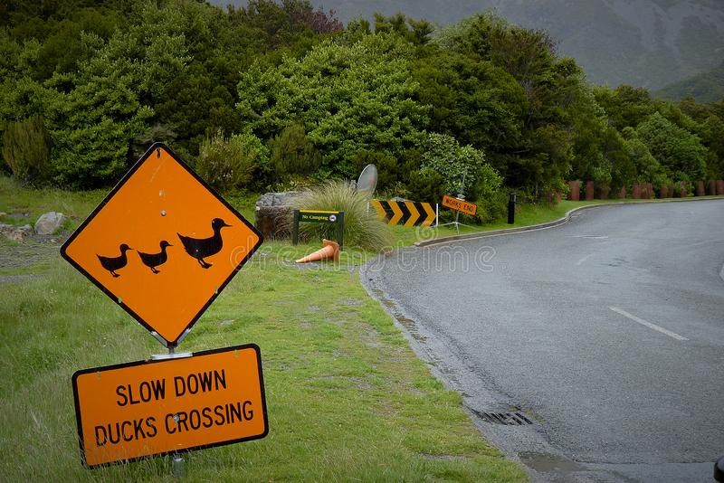 Traffic sign for Slow down duck crossing. stock images