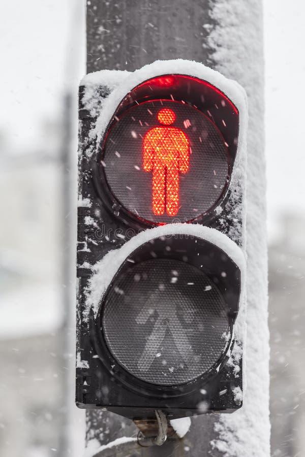 Trafikljus i snowen royaltyfri bild