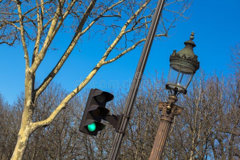 Trafikljus lykta, träd mot den blåa himlen i vår i Paris royaltyfria bilder
