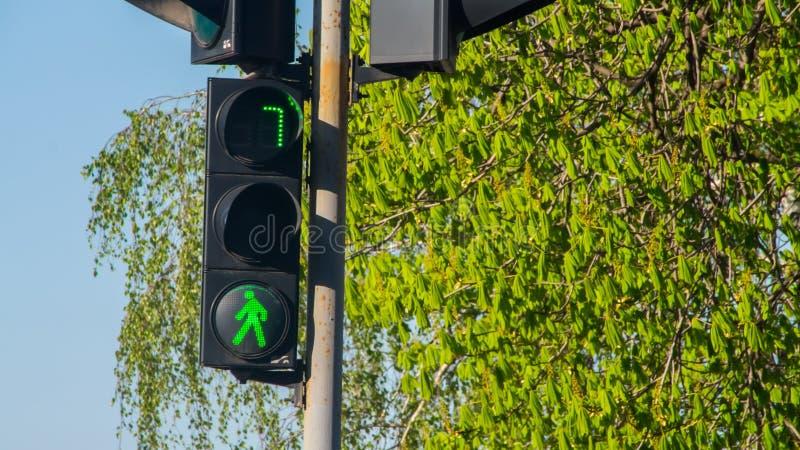 Trafikljus med det tända klarteckenet arkivbild