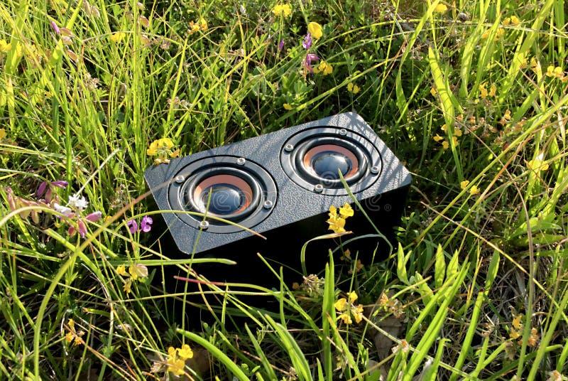 Tragbarer Audiosprecher im Gras stockfotografie