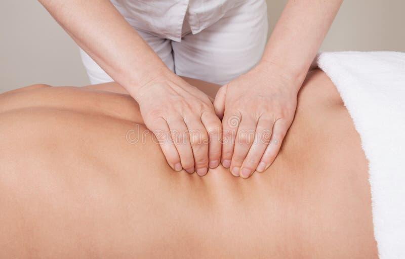 Tragen Sie Berufsmassage auf einer Muskelgruppe der Rückseite einer Frau zur Schau lizenzfreies stockbild