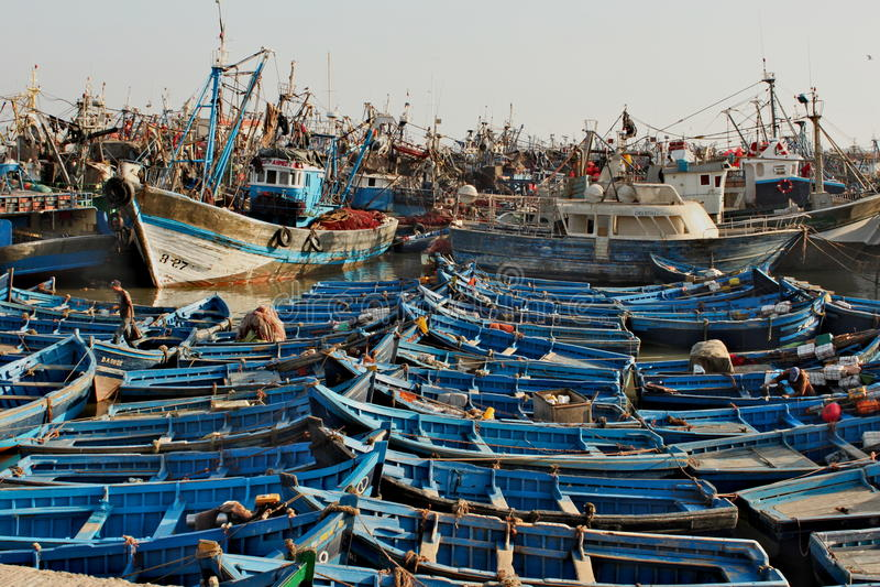 Tragen Sie voll von den traditionellen blauen Booten in Essaouira in Morroco lizenzfreie stockbilder