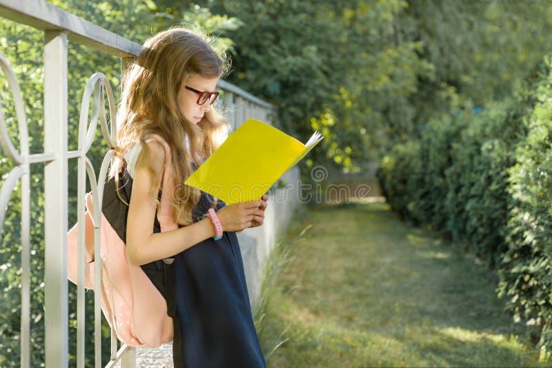 Tragende Gl?ser des Schulm?dchengrundsch?lers mit dem Rucksackleseschulnotizbuch, stehend nahe Zaun, im Schulhof stockbilder