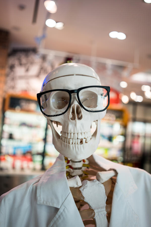 Tragende Hauptbrillen des Schädels und weißer wissenschaftlicher Laborkittel lizenzfreie stockfotografie