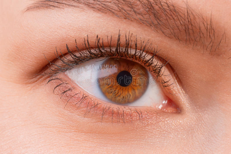 Tragende Kontaktlinsen weiblichen Auges Browns lizenzfreie stockbilder