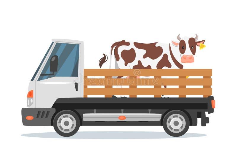 Tragende Kuh des Landwirtauto-LKWs stock abbildung