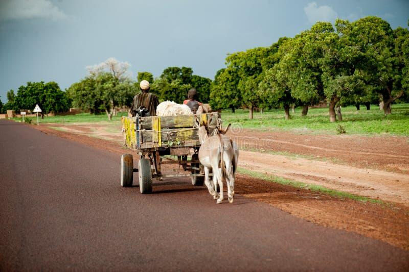 Tragende Nahrung in Afrika stockbild