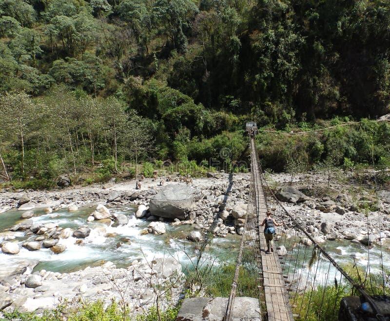 Tragende Waren über Hängebrücke zu niedrigem Lager Everest stockfoto