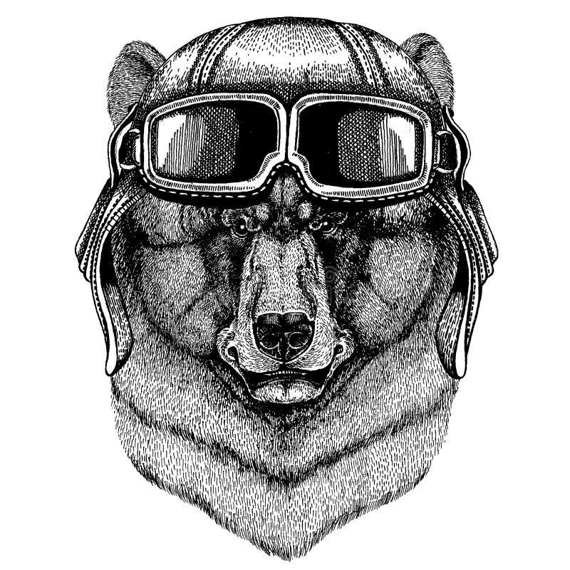 Tragender Fliegertiersturzhelm mit Gläsern Die Schlangejagd im Labyrinth Gezeichnete Illustration des schwarzen Bären Hand für Tä stock abbildung