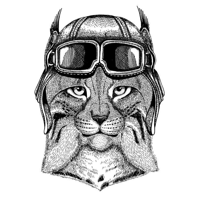 Tragender Fliegertiersturzhelm mit Gläsern Die Schlangejagd im Labyrinth Gezeichnetes Bild des Wildkatze-Luchses Bobcat Trot Hand lizenzfreie abbildung
