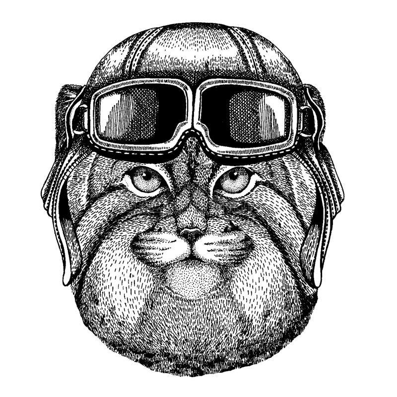 Tragender Fliegertiersturzhelm mit Gläsern Die Schlangejagd im Labyrinth Gezeichnetes Bild Wildkatze Manul Hand für Tätowierung,  stock abbildung