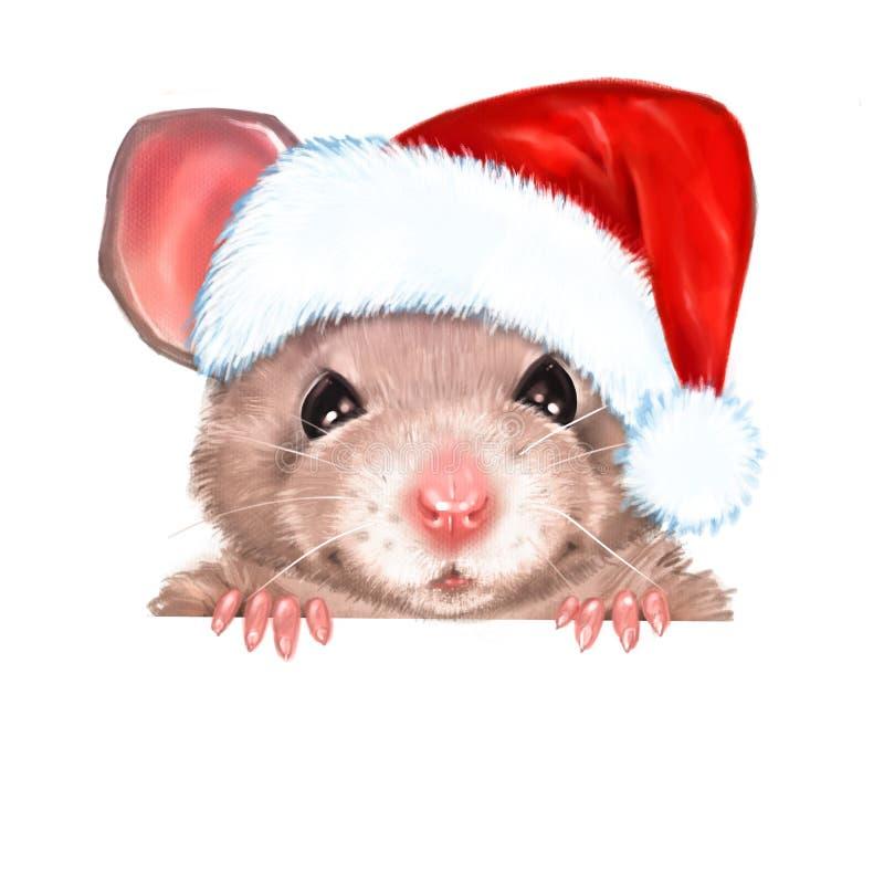 Tragender Hut der Ratte Weihnachts lizenzfreie abbildung