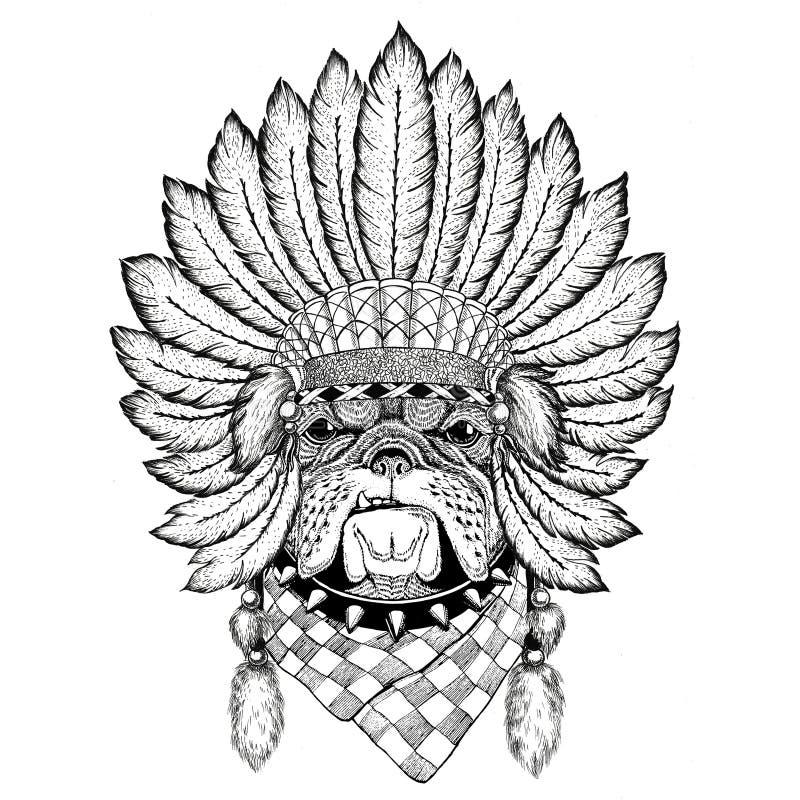 Tragender Hut indiat wildes Tier der Bulldogge mit Federn Boho-Artweinlesestich-Illustration Bild für Tätowierung, Logo stock abbildung