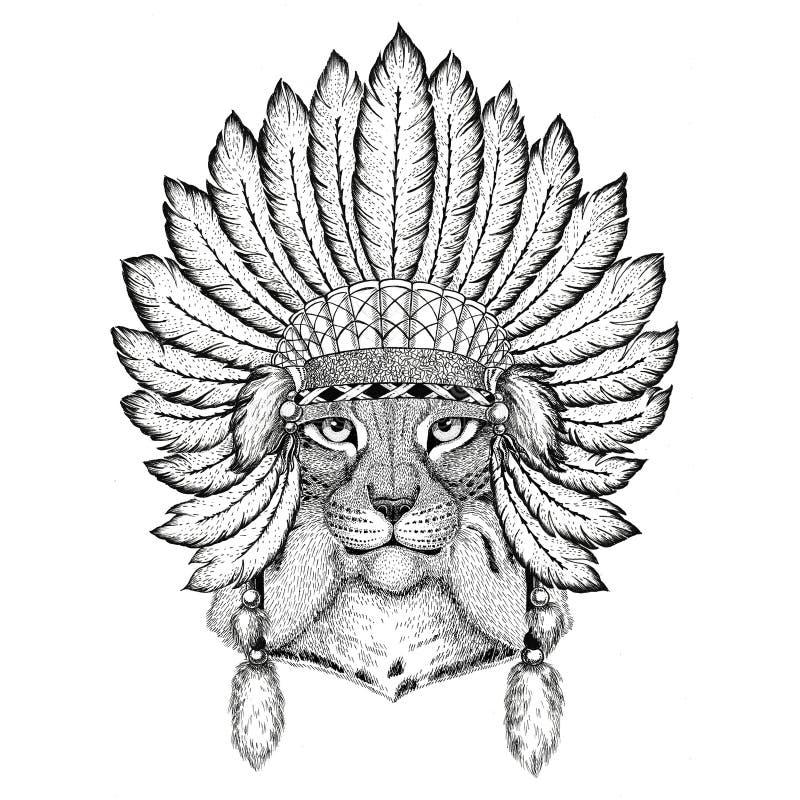 Tragender indiat Wildkatze-Luchs-Bobcat Trot Wilds Tierhut mit Federn Boho-Artweinlesestich-Illustration Bild vektor abbildung