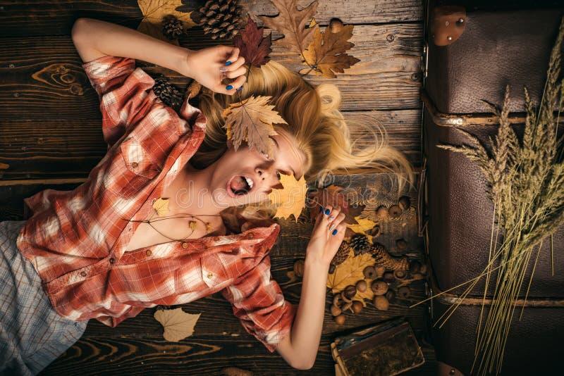 Tragender Pullover der sinnlichen Frau und Betrachten der Kamera Schönes sinnliches blondes Spielen mit Blättern Mädchen im Herbs stockfotografie