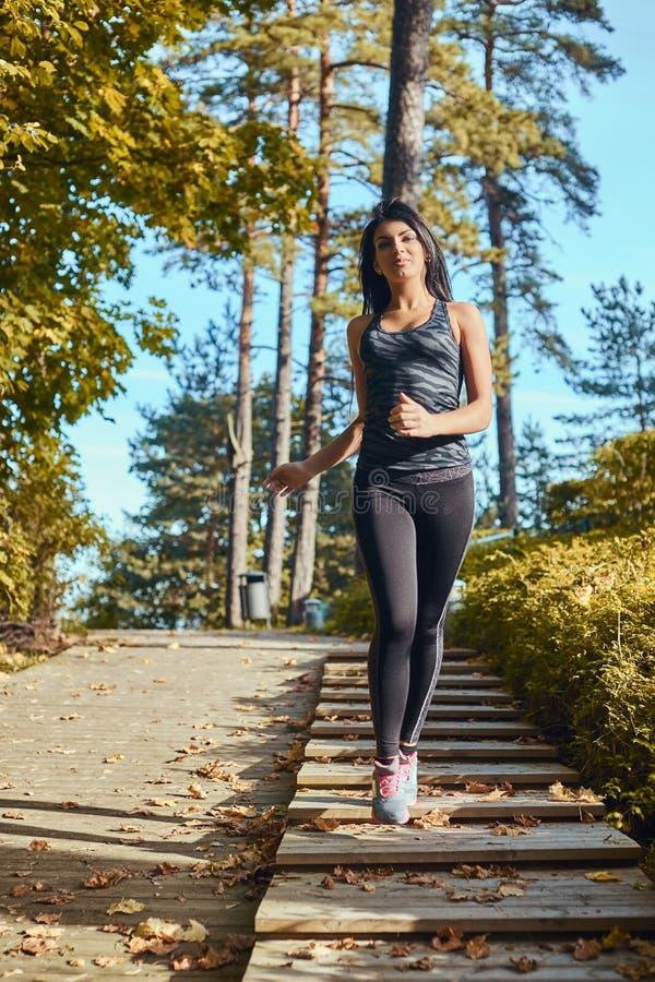 Tragender Sportkleidungsbetrieb der jungen Eignungsfrau auf den hölzernen Schritten am Herbstpark stockbild