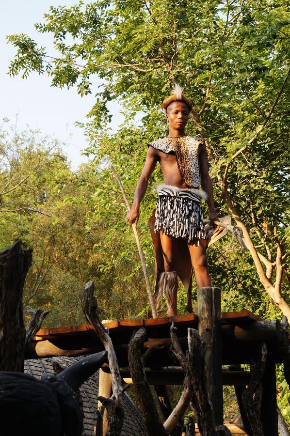 Tragendes Kriegerskleid des Zulu- Mannes in kulturellem Dorf Lesedi lizenzfreie stockfotos