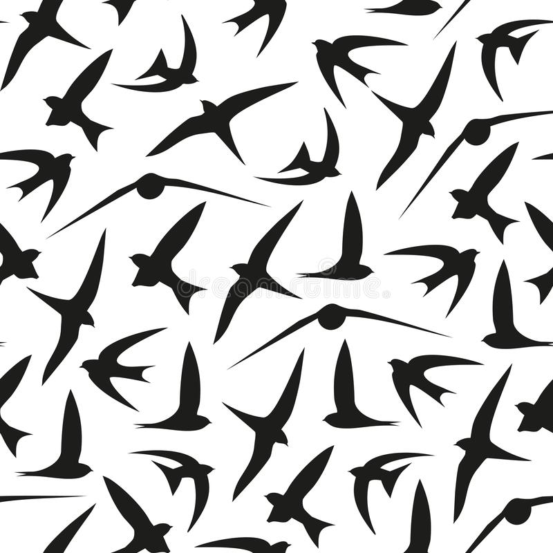 Trago, rápido, pájaros Modelo gráfico del vector Fondo inconsútil decorativo stock de ilustración