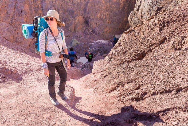 Trai för kanjon för öken för sten för anseende för fotvandrare för ung kvinna turist- arkivfoto