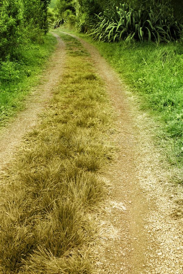 Download Trail stock photo. Image of road, discovery, adventure - 25385774