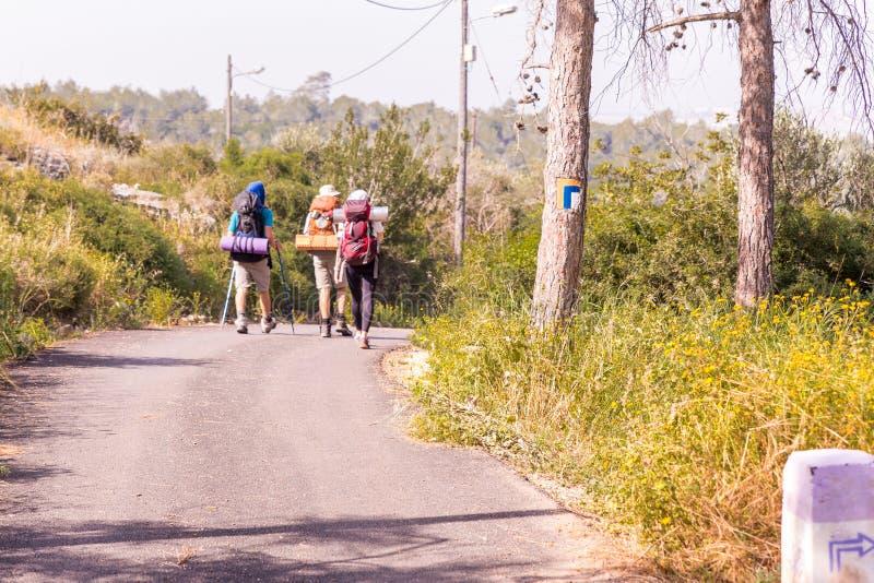 Trail blazing on tree, three tourists hiking asphalt road. royalty free stock photos