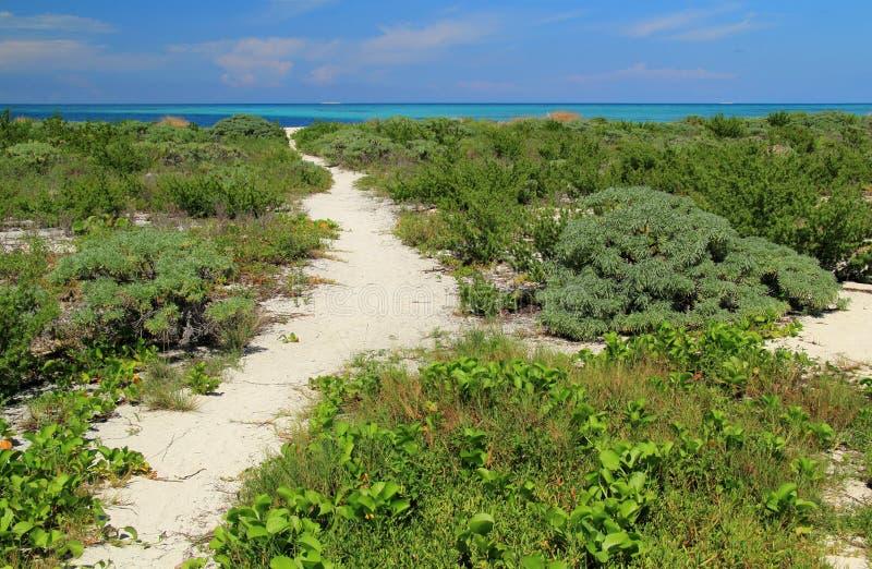 Trail Through Bush Key. Scenic view of Bush Key in Dry Tortugas National Park, Florida Keys royalty free stock photography
