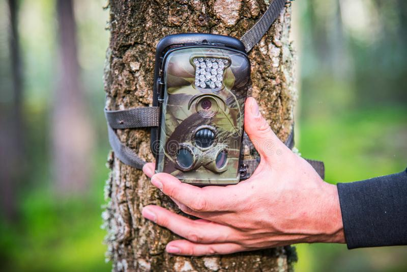 Trail camera adjusting in forest. Trail Camera Animal Camera Waterproof Wildlife Camera With Lamp Infrared, Screen And Wide Angle 120° - Infrared Night Vision royalty free stock images