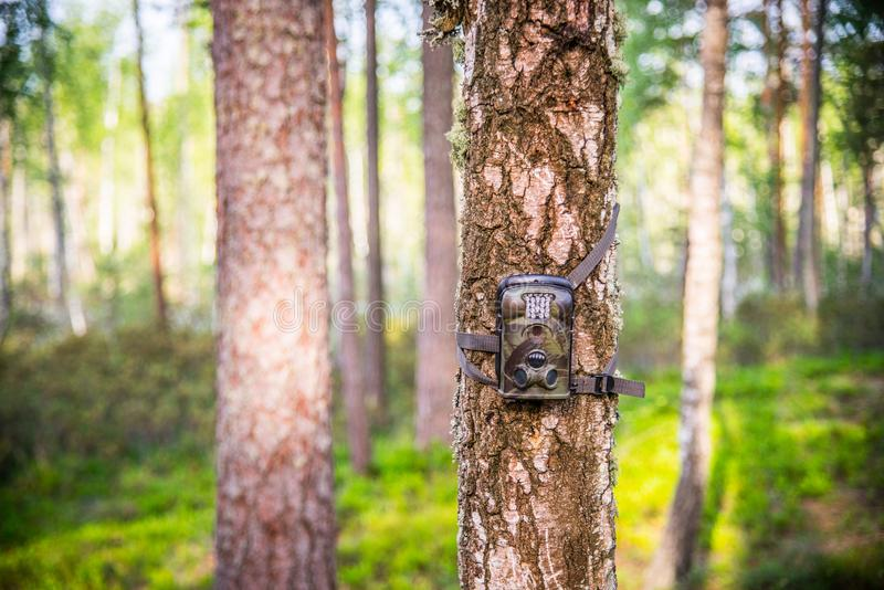 Trail camera Infrared Night Vision. Trail Camera Animal Camera Waterproof Wildlife Camera With Lamp Infrared, Screen And Wide Angle 120° - Infrared Night royalty free stock photo