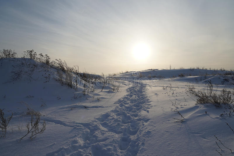 Trail. Country ski cross skiing winter snow track path crosscountry flat trail royalty free stock image